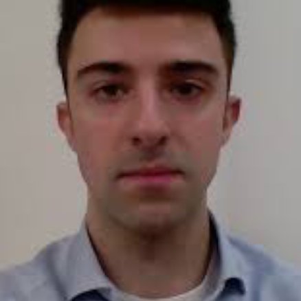 Valerio Bonametti - University of York